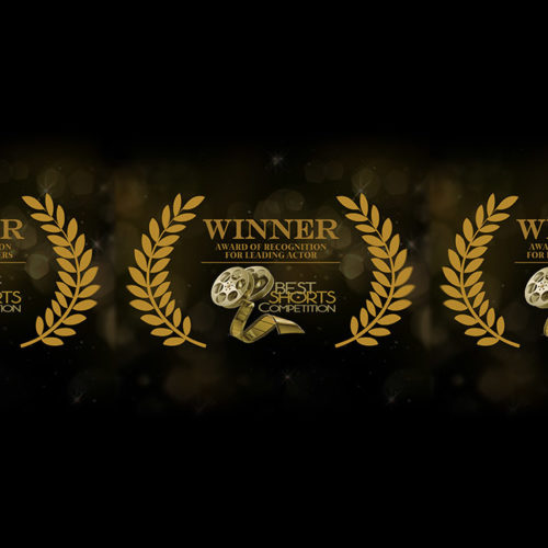 MORE AWARDS IN THE BAG FOR MICLNGRACE STUDIOS